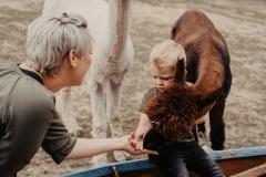 lapakatal-familienshooting-mit-alpakas-fotos-von-aline-egerding-fotografie06