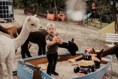 lapakatal-familienshooting-mit-alpakas-fotos-von-aline-egerding-fotografie08
