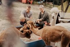 lapakatal-familienshooting-mit-alpakas-fotos-von-aline-egerding-fotografie10