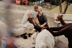 lapakatal-familienshooting-mit-alpakas-fotos-von-aline-egerding-fotografie11