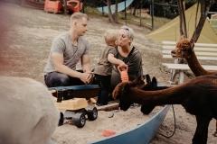 lapakatal-familienshooting-mit-alpakas-fotos-von-aline-egerding-fotografie13