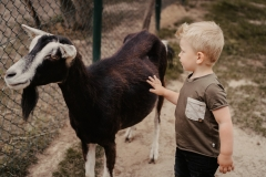 lapakatal-familienshooting-mit-alpakas-fotos-von-aline-egerding-fotografie14