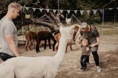 lapakatal-familienshooting-mit-alpakas-fotos-von-aline-egerding-fotografie20